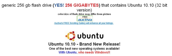 2011 Ubuntu live USB 256