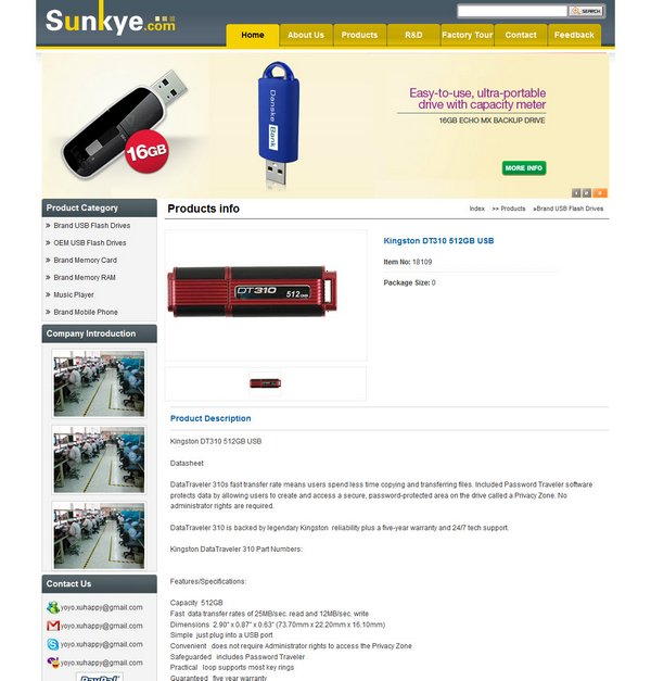 sunkye DT310 512GB Page