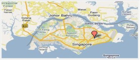Singapore Organized Crime